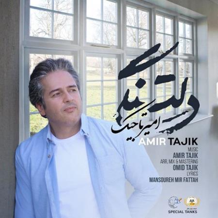 دانلود آهنگ امیر تاجیک دلتنگی